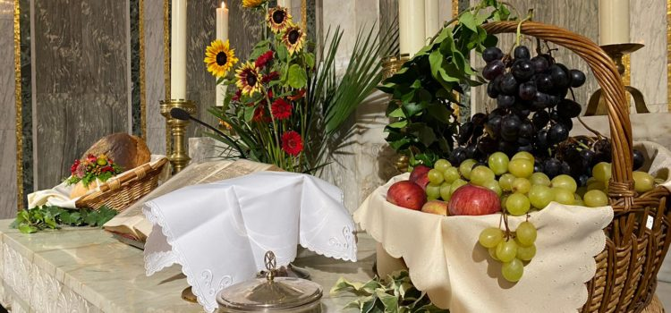 Festa del Ringraziamento